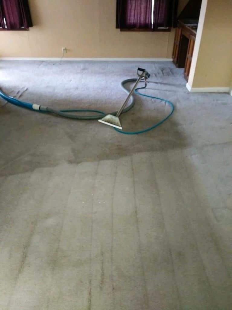 carpet-cleaning-process-wichita-ks